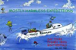 Mostly Harmless, our 28' picnic launch for day trips to the Tobago Cays, and other nearby southern Grenadine islands